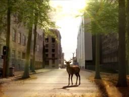 Grany_Deer_04